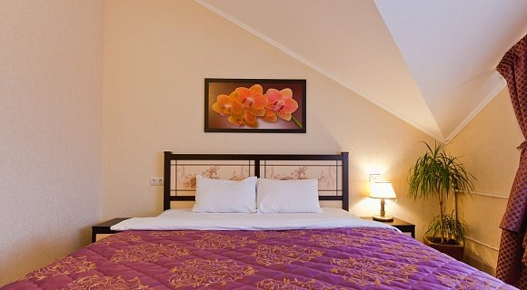 Double Room of Comfort Category